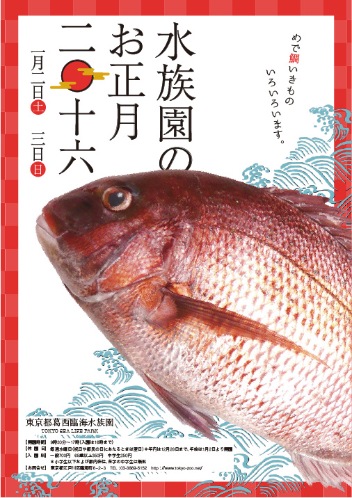 画像:卒業生制作物:ポスター:水族館